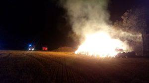 pozar fot. osp buk 300x169 - Buk: Kolejny pożar na polu