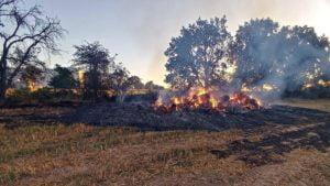 pozar fot. osp buk3 300x169 - Buk: Kolejny pożar na polu