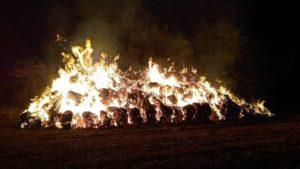 pozar fot. osp buk4 300x169 - Buk: Kolejny pożar na polu