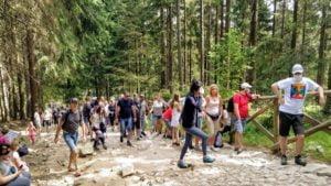 szlak do kamienczyka fot. g. ciepla4 300x169 - Sudety: Tłumy na trasie na Kamieńczyk!