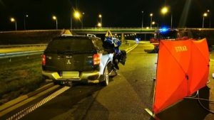 wypadek fot. osp ksrg smigie2 300x169 - Leszno: Tragiczny wypadek na S5 pod Śmiglem