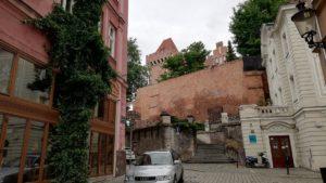 zamkowa zielen fot. t. dworek 1 300x169 - Poznań: Rada Osiedla Stare Miasto proponuje ogródki fasadowe!
