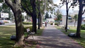 zniszczone kosze fot. zzm2 300x169 - Poznań: Zniszczone kosze na śmieci na Deptaku Dębiec