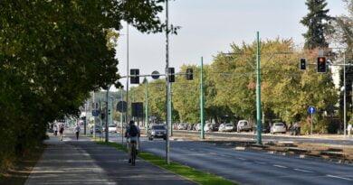 droga rowerowa grunwaldzka fot. ump 390x205 - Poznań: Rozpoczyna się remont Grunwaldzkiej!