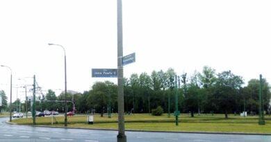 Poznań: Wycinka drzew na rondzie Rataje. Dlaczego budzi emocje?