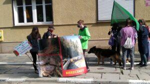 protest przeciwko wycince bieszczadzkich lasow inicjatywa dzikie karpaty 2 300x169 - Poznań: Pikieta przeciwko wycince bieszczadzkich lasów