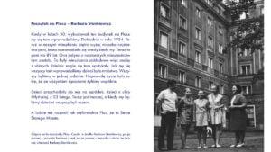 przewodnik po placu cyryla kobalt centrala23 300x169 - Poznań: Alternatywny Przewodnik po placu Ratajskiego