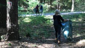 sprzatanie lasu przez posum fot. posum3 300x169 - Poznań: Pracownicy POSUM posprzątali las w Łopuchówku