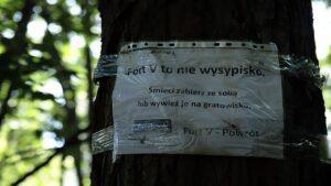 sprzatanie swiata wichrowe wzgorze5 300x169 - Poznań: Osiedle Wichrowe Wzgórze posprzątało okolicę