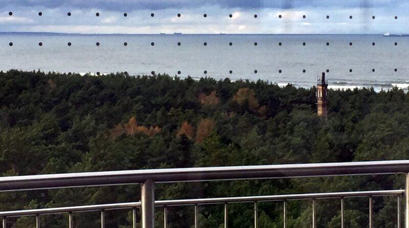 Zabezpieczenia przed kolizjami ptaków, Zbiornik Kazimierz, wyspa Sobieszewska, widok od wnętrza, fot. A. Szurlej Kielańska