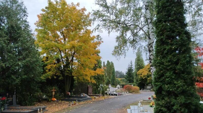 cmentarz fot. K. Adamska