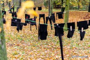 wyroknakobiety wieszamy czarne pranie fot. slawek wachala 0086 300x200 - Poznań: W ramach Strajku Kobiet na Cytadeli zawisło... pranie