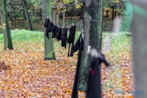 wyroknakobiety wieszamy czarne pranie fot. slawek wachala 0098 300x200 - Poznań: W ramach Strajku Kobiet na Cytadeli zawisło... pranie