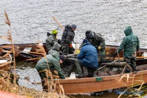 jezioro malta odlow ryb fot. slawek wachala 4360 300x200 - Poznań: W Malcie trwa... wielkie łowienie ryb