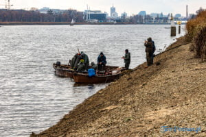 jezioro malta odlow ryb fot. slawek wachala 4366 300x200 - Poznań: W Malcie trwa... wielkie łowienie ryb