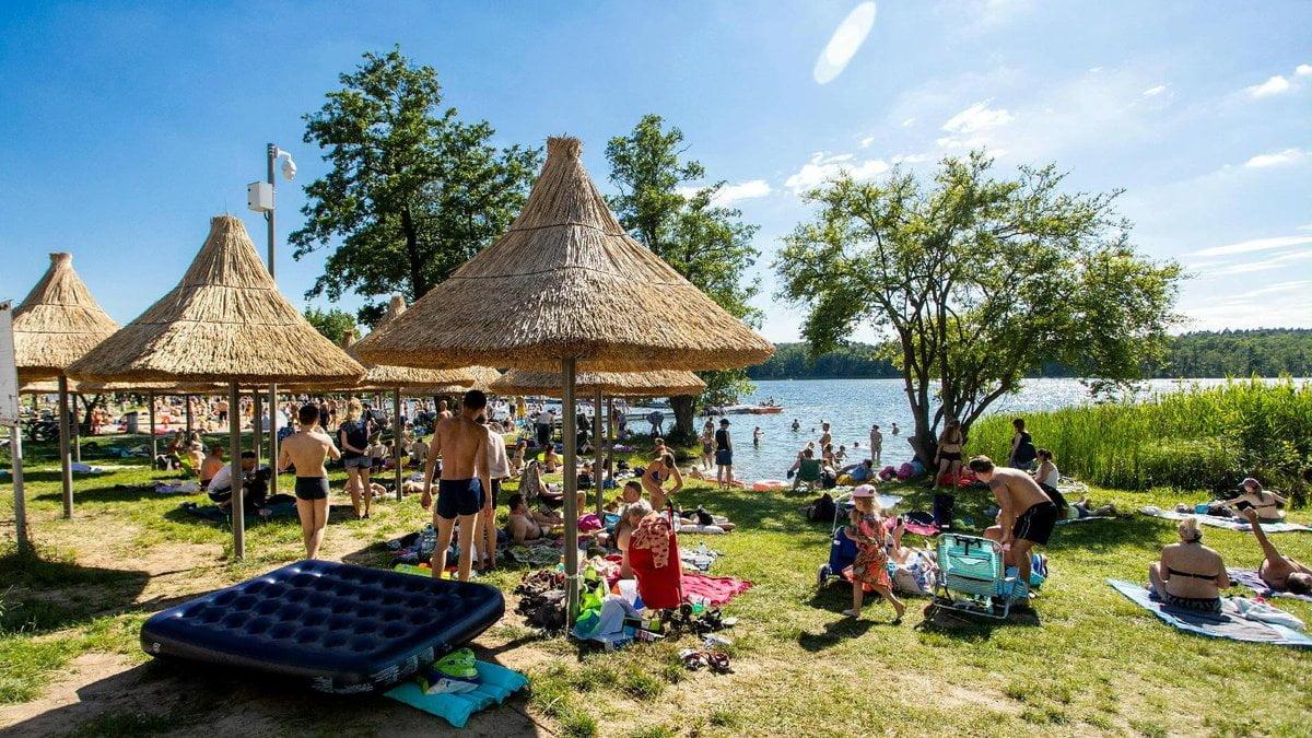 Poznań: Piknik dla noworodków nad jeziorem Strzeszyńskim