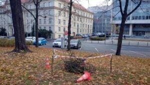 schron w parku wieniawskiego fot. poznanska grupa eksploracyjna 300x169 - Poznań: Tajemniczy schron w parku Wieniawskiego