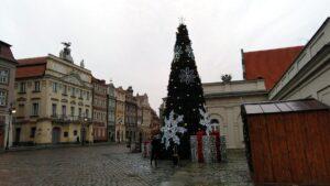 choinka miejska6 300x169 - Poznań: Choinka już jest!