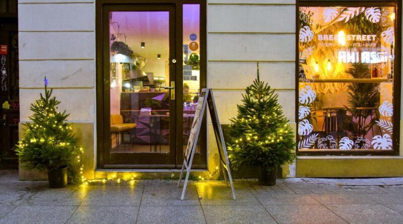 choinki w miescie fot. ump3 800x445 - Poznań: Choinki na ulicach miasta
