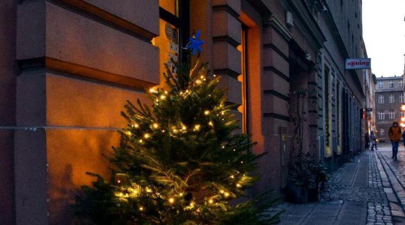 choinki w miescie fot. ump4 800x445 - Poznań: Choinki na ulicach miasta