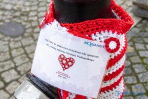 hydranty na 102 rocznice wybuchu powstania wielkopolskiego fot. slawek wachala 7552 300x200 - Poznań: Biało-czerwone hydranty z okazji rocznicy wybuchu Powstania Wielkopolskiego