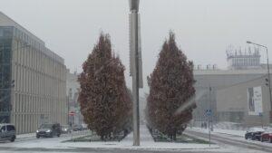 pierwszy snieg10 300x169 - Poznań: Spadł pierwszy śnieg!