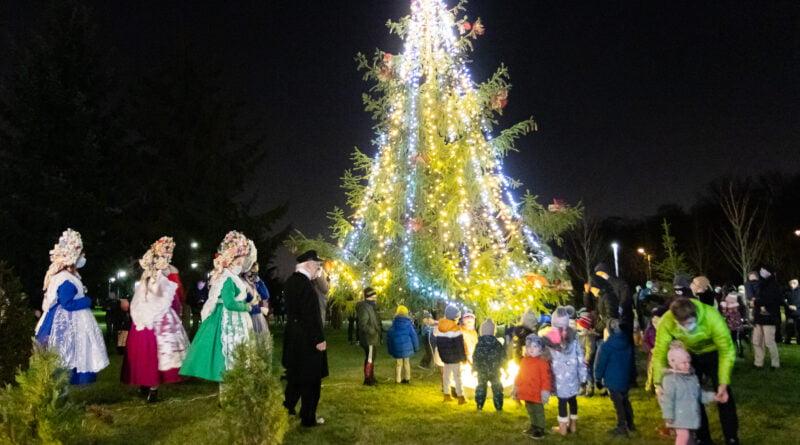 Rozświetlenie choinki w Parku im. Bambrów Poznańskich fot. Sławek Wąchała