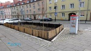 zielen chwaliszewo fot. zdm5 300x169 - Poznań: Nowa zieleń na Chwaliszewie