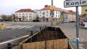 zielen chwaliszewo fot. zdm6 300x169 - Poznań: Nowa zieleń na Chwaliszewie