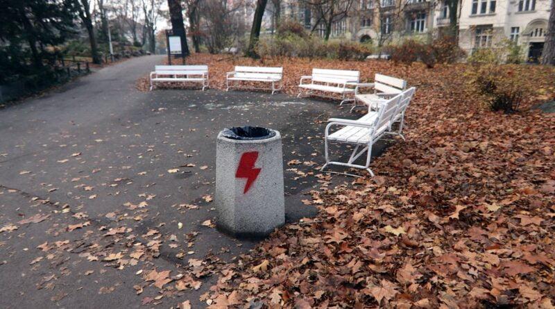 zniszczone kosze fot. Palmiarnia Poznańska