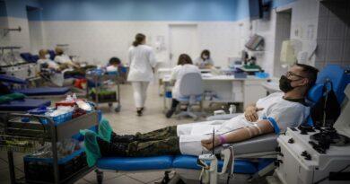 oddawanie krwi fot. WBOT