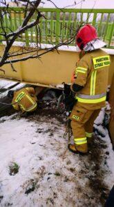 pomoc bezdomnym fot. smmp4 165x300 - Poznań: Koczowała pod wiaduktem. Strażnicy uratowali jej życie