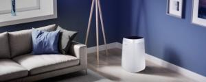 powietrze fot. art. spon. 5 300x120 - Gdzie ustawić oczyszczacz powietrza w domu?