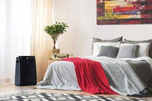powietrze fot. art. spon. 8 300x200 - Gdzie ustawić oczyszczacz powietrza w domu?