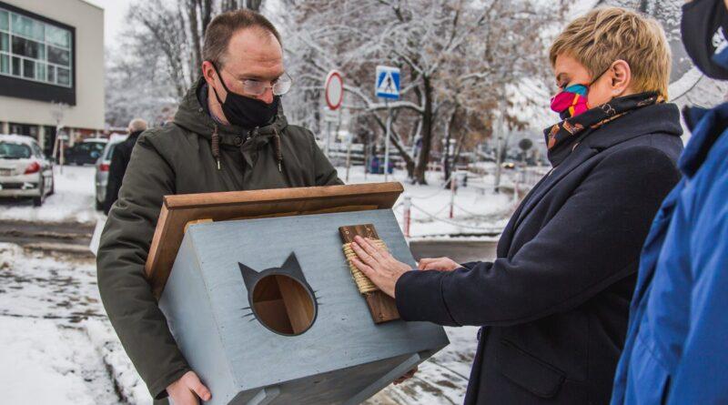 prezydent Beata Klimek i domki dla kotów fot. UM Ostrów