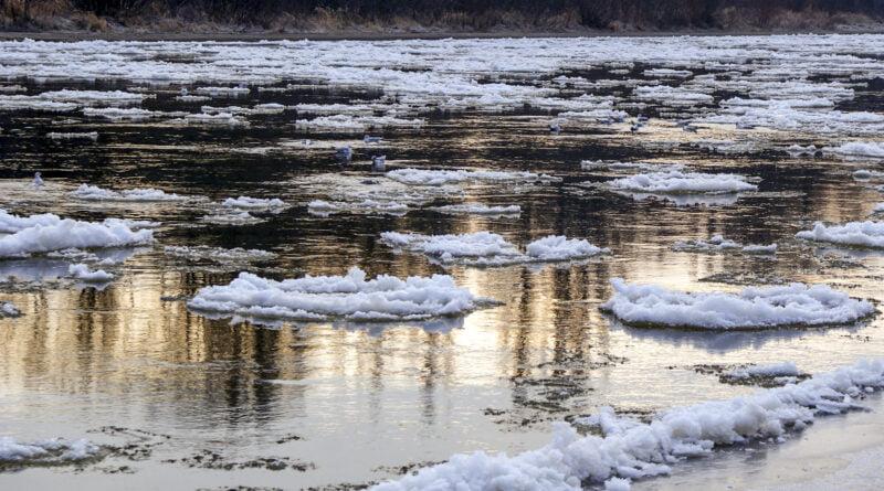 Zima śryż rzeka Warta fot. Sławek Wąchała