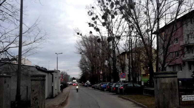 ulica Sielawy fot. P. Sowa