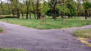 park tysiaclecia fot. pim 300x169 - Poznań: Park Tysiąclecia idzie do remontu