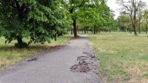 park tysiaclecia fot. pim2 300x169 - Poznań: Park Tysiąclecia idzie do remontu