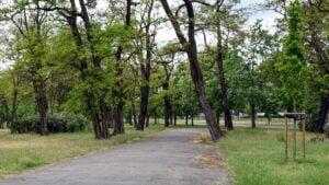 park tysiaclecia fot. pim3 300x169 - Poznań: Park Tysiąclecia idzie do remontu