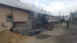 pozar w perzynach fot. osp zbaszyn2 300x169 - Nowy Tomyśl: Pożar w Perzynach. Spłonęło 40 tysięcy kurczaków