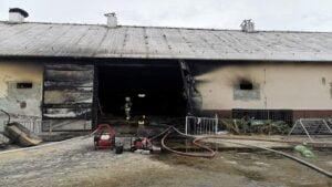 pozar w perzynach fot. osp zbaszyn3 300x169 - Nowy Tomyśl: Pożar w Perzynach. Spłonęło 40 tysięcy kurczaków