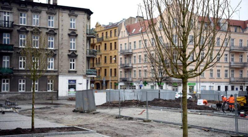 Rynek Łazarski, pierwsze drzewa fot. UMP