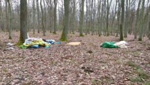 smieci fot. wolontariat wpn 300x169 - Poznań: Wysypisko śmieci w Wielkopolskim Parku Narodowym