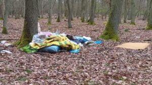 smieci fot. wolontariat wpn2 300x169 - Poznań: Wysypisko śmieci w Wielkopolskim Parku Narodowym