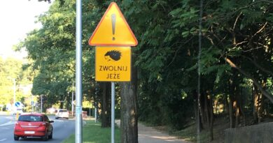 jeż na znaku drogowym fot. UPP