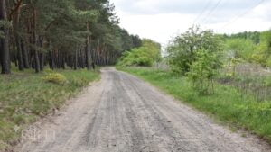nadwarcianska fot. pim 300x169 - Poznań: Stowarzyszenie Otwarte Ramiona protestuje przeciwko wycince drzew na Morasku