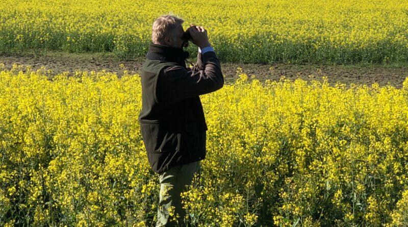 obserwowanie ptaków fot. UPP