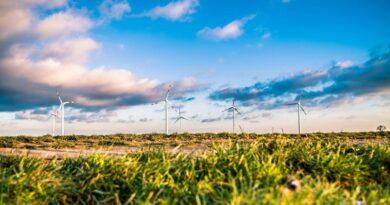 turbiny wiatrowe fot. pixabay