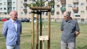 aleja warciarzy fot. zzm3 300x169 - Poznań: Aleja Warciarzy na urodziny Warty Poznań